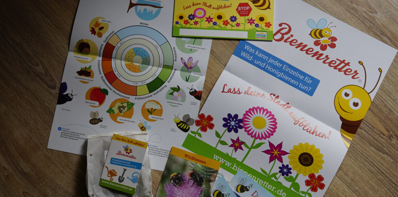 Bienenretter, Umwelttag, Förderverein Grundschule Rengshausen